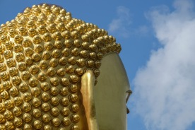 The hair of the golden Buddha in Dambulla, Sri Lanka