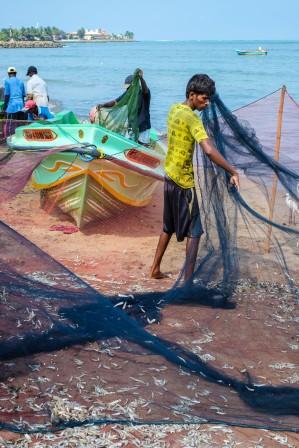 Fishermen´s net Negombo, Sri Lanka