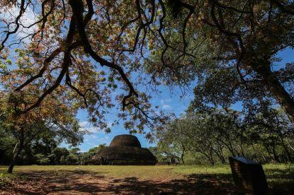 Polonnaruwa-park