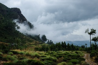 Highlands of Sri Lanka