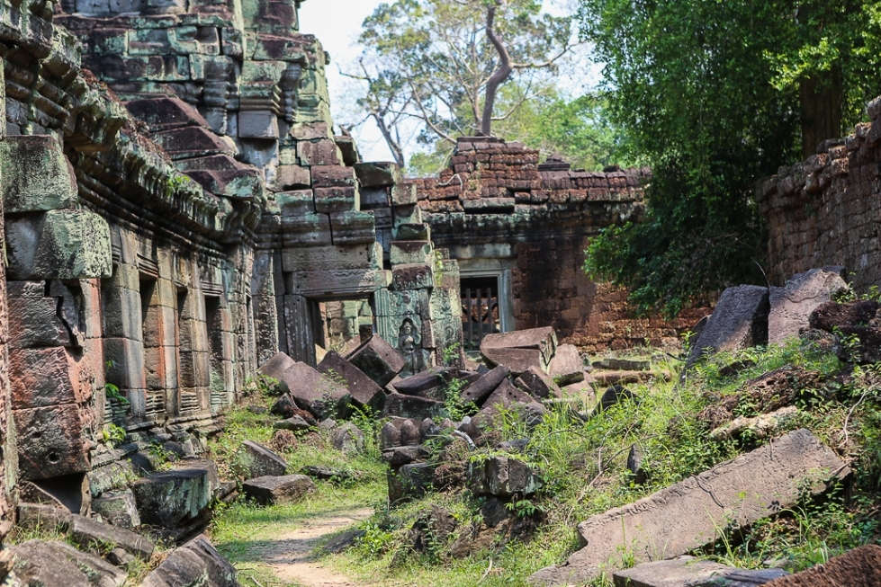 Angkor Wat Wilderness-1