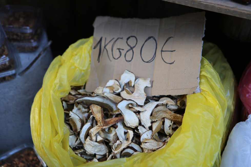 Montenegro-dried-mushroom-1785