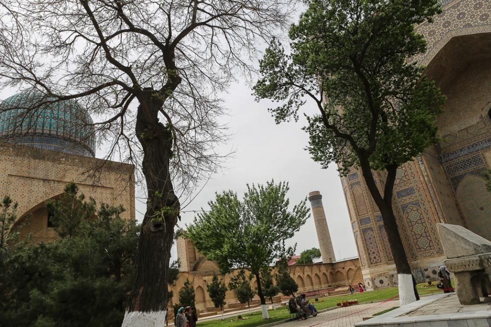 Samarkand Bibi Khanum Mosque-6238