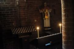 San Teodoro Pavia-9102