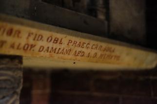 San Teodoro Pavia-9114